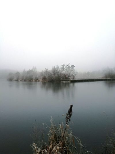 Nature Water Reflection Tranquility Outdoors Tranquil Scene No People Fog Beauty In Nature Lake Scenics Day Tree Animal Themes Nature Winter Landscape Cold Temperature Foggyday Fog Over Water Foggyweather Foggy Evening Fogscape Foggy Lake Foggy Afternoon