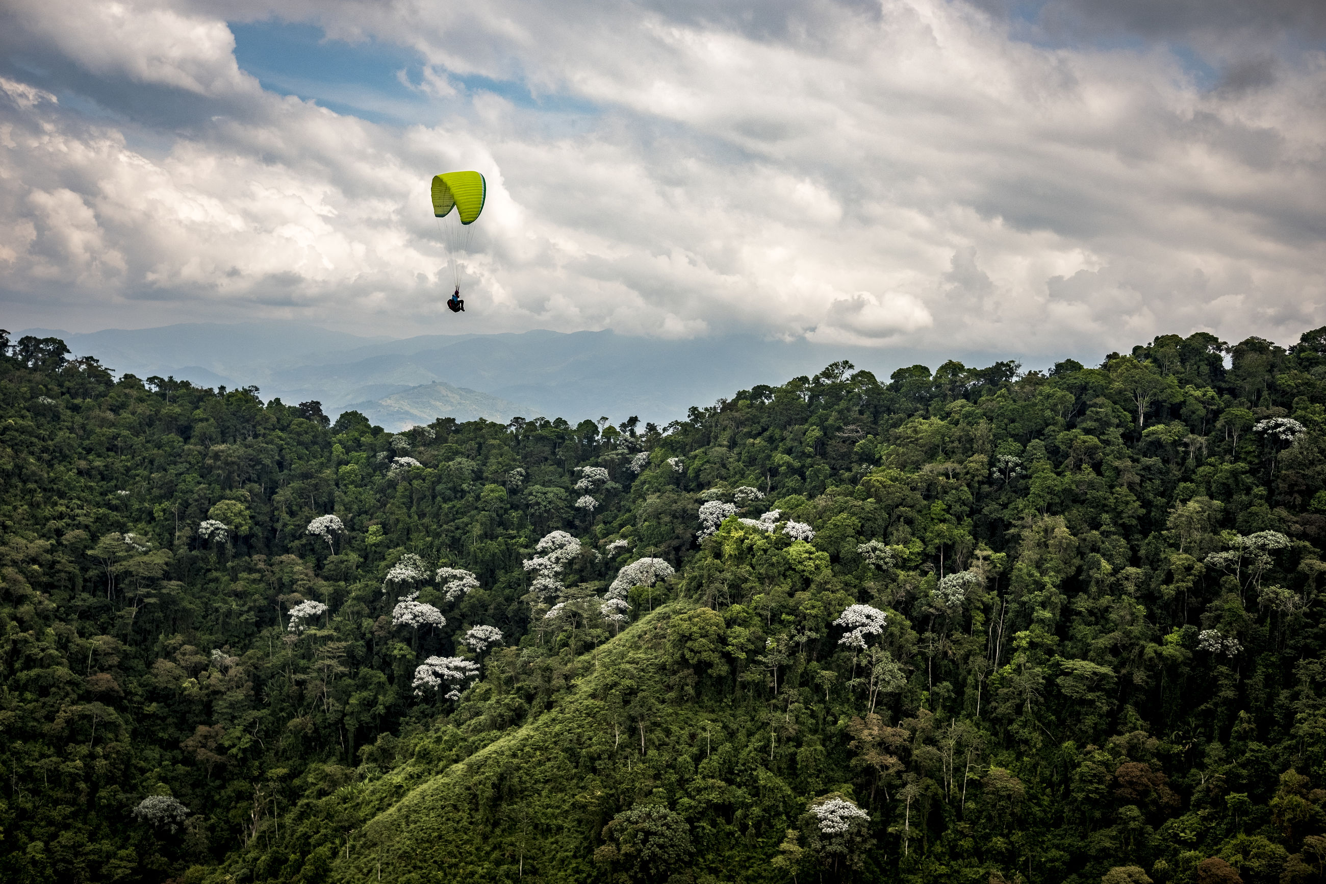 adventure, sky, cloud - sky, tree, plant, extreme sports, flying, transportation, parachute, mid-air, nature, beauty in nature, sport, paragliding, growth, leisure activity, unrecognizable person, freedom, day, balloon, outdoors