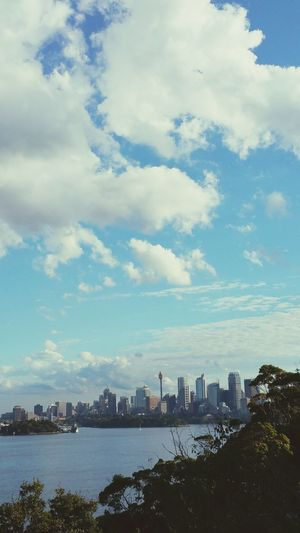 View from Sydney Toronga Zoo, Australia