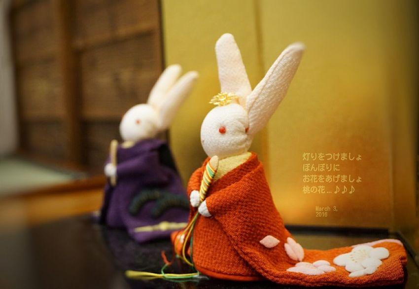 Girls Festival Hinamatsuri 雛祭り 2016 March Japanese Culture