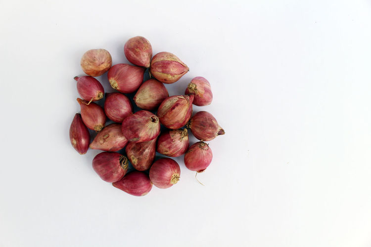 High angle view of fruits against white background