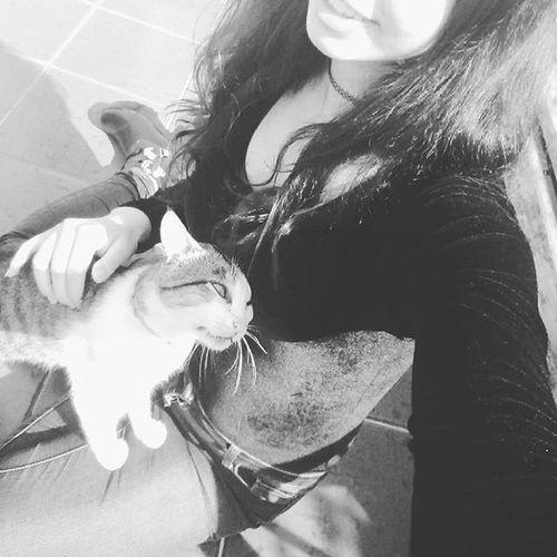 ⠀⠀⠀⠀⠀ ⠀⠀⠀⠀⠀⠀⠀⠀⠀⠀ ⠀⠀⠀⠀⠀ ⠀⠀⠀ ⠀⠀⠀⠀⠀⠀⠀⠀⠀⠀ ⠀⠀⠀⠀⠀⠀ ⠀⠀⠀⠀ ⠀⠀⠀⠀⠀⠀⠀⠀⠀⠀ ⠀⠀⠀⠀ ✨Sit under the sun with your cat ✨ Sun Sunnyday Goodafternoon Haveagoodday Konichiwa Boatarde Cute Cuteness KAWAII Kawainess Cat Kitty Kitten Adorable Fluffy Fur Furryfriend Light Emo Sit Cosplayer AnimesLover Otaku Purr Mew NoMakeup Hair PicOfTheDay Smile Choker