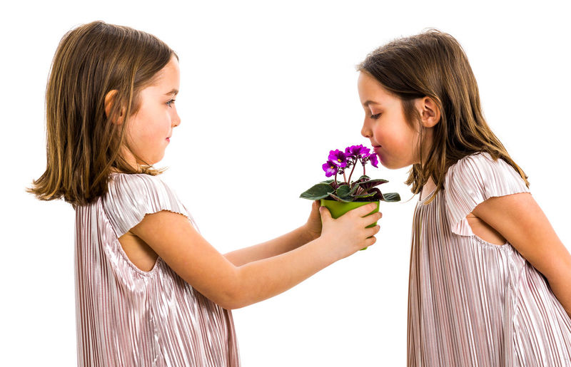 Identical twin girl giving viola flower pot to her sister. Little girl child is giving a gift or present of flowers to her sister. Profile view, studio shot, isolated on white background. Flower Flowering Plant Child Girls Two People Females Women Twins IDENTICAL TWINS Gift Present Smelling Smelling The Flowers Sisters Family Flowers Flower Pot Pot Potted Plant Viola Violet Violet Flowers Green Young Adult Childhood Children Garden Gardener Holding Giving Hands Kid Lifestyles Violaceae Fun Plant Dress Surprise White Background Profile View Studio Shot White Togetherness Together Love Birthday Birthday Present