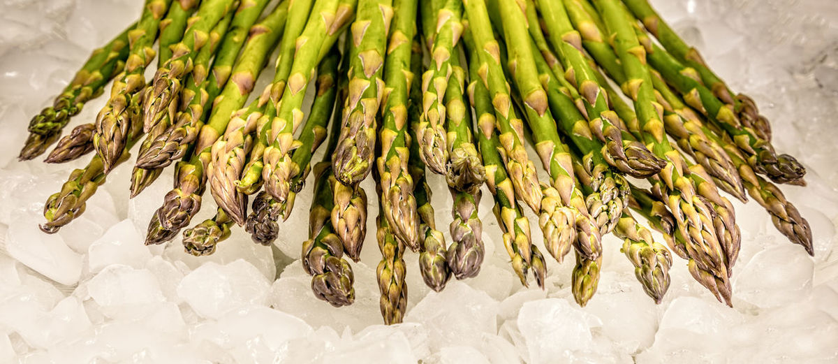 Fresh green asparagus on ice Asparagus Fresh Background Green Bunch Food Healthy Organic Vegetable Ingredient Raw Isolated Nature White Health Season  Diet Meal Gourmet Cooking Ripe Cuisine Veggie Color Natural Plant Spring Macro Studio Close-up Group Freshness Wild Nutrition Seasonal Banner Food And Drink Healthy Eating Wellbeing Still Life Indoors  No People Green Color Large Group Of Objects Abundance Raw Food Market