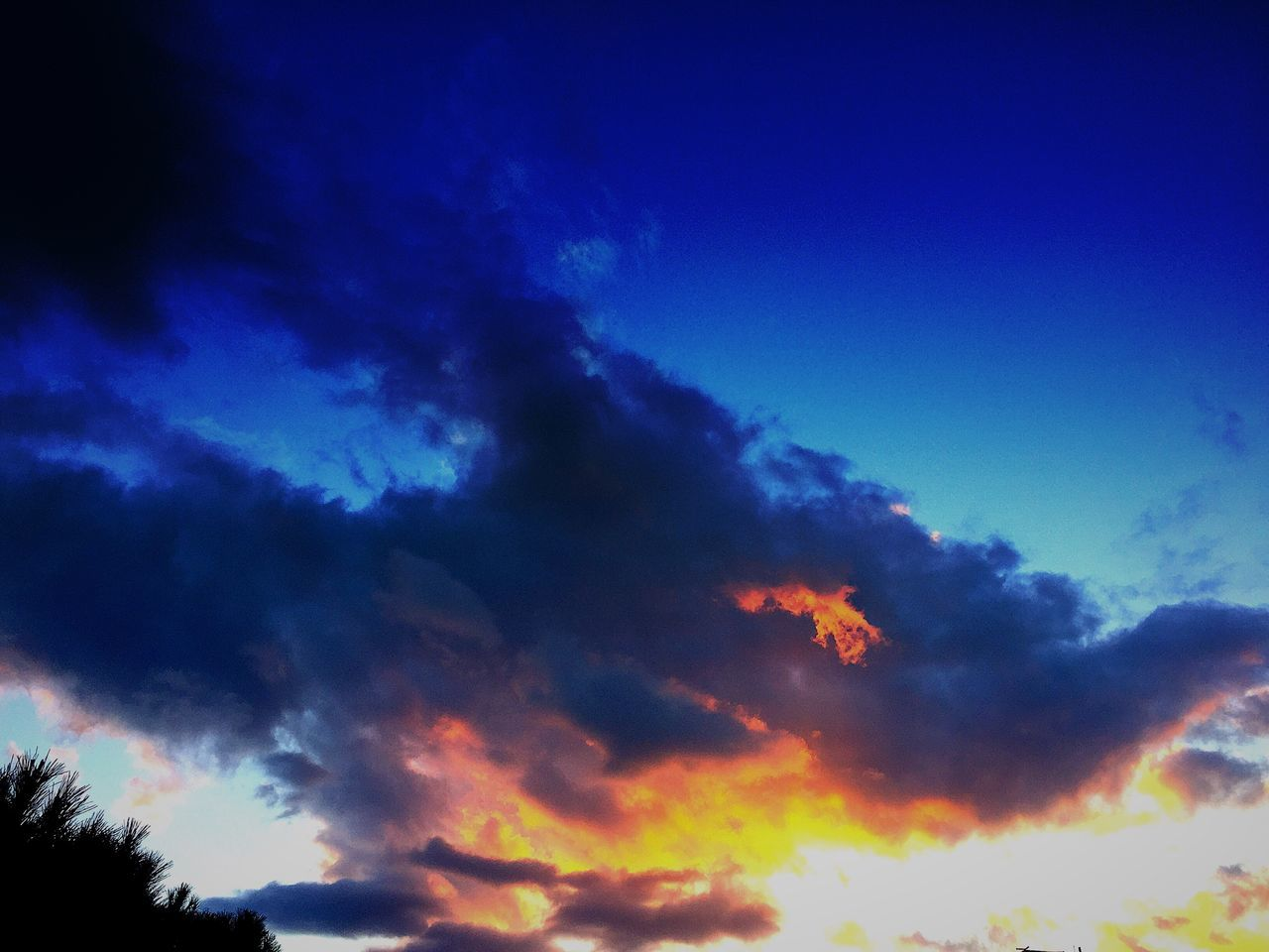 sky, low angle view, beauty in nature, blue, cloud - sky, nature, scenics, sunset, tranquil scene, silhouette, tranquility, no people, sky only, outdoors, day