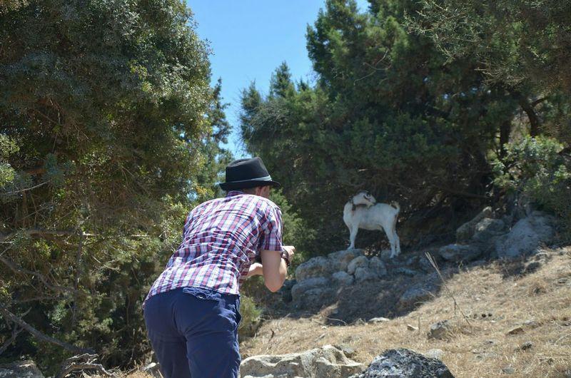 😂 That's Me Photography Animals Enjoying Life Cyprus Working