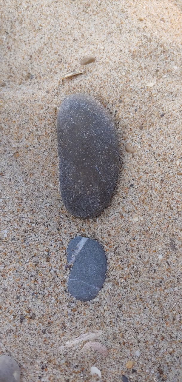sand, no people, beach, land, nature, high angle view, day, close-up, solid, stone - object, stone, rock, outdoors, animal, animal wildlife, textured, animal themes, shape, design, directly above, pebble