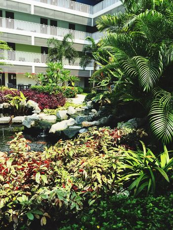 Check This Out My School~~ Dormitory