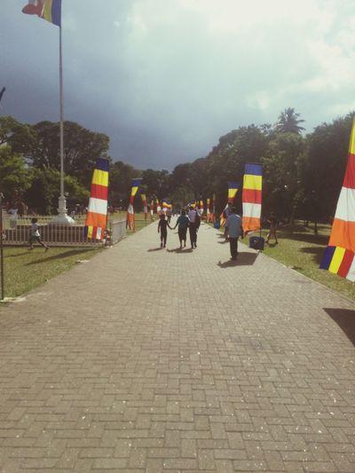 Sri Lanka Kandy Buddhist Flag Traveling In Sri Lanka
