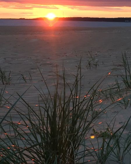 Sunsetime Frösakull May 2016 Beauty In Nature Beach Photography Sweden Sunsetl