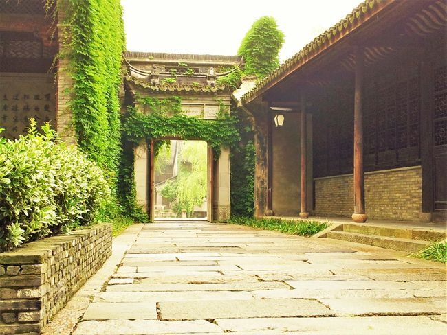 Architectural Column Architecture Built Structure Chinese Building Chinese House Court Courtyard House Day Green Color Nature No People Old Buildings Old House Old Houses Old Town Outdoors Plant Sky Steps Sunlight Tree