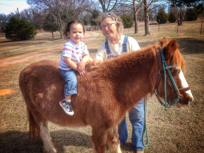 We Are Family Everyday Joy Country Life Family Matters Love My Family ❤ Grandmother And Grandson Horse Riding Lessons Pony EyeEm Animal Lover I Love Horses