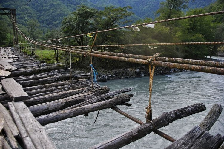 Wooden railing by river in forest
