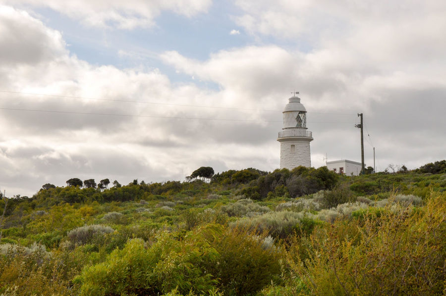 Cape Naturaliste Lighthouse under cloudy skies with lush vegetation on the coast of Western Australia. Architecture Balcony Building Cape Naturaliste Coastal Dunes Geographe Bay Gloomy Greenery Landscape Landscape_Collection Lantern Room Lighthouse Limestone National Park Nature Outdoors Overcast Plants Sky Stormy Tree Weather Western Australia White