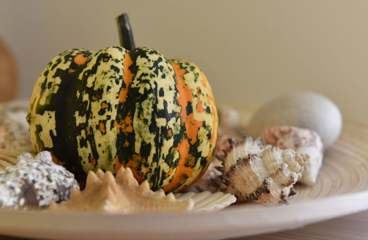 Decorative pumpkins Seastar Small Pumpkins Close-up Cooked Decorative Pumpkins Focus On Foreground Food Food And Drink No People Seashell Selective Focus