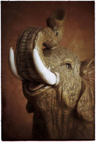 Elephant statuette. Photography Canon YYC Statuettes