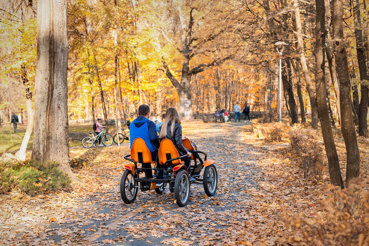 Man riding bicycle on road amidst trees during autumn