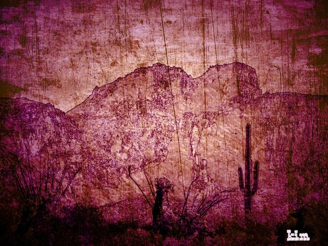 Beauty In Nature Close-up Day Full Frame Nature No People Outdoors Purple Red Rock - Object Scenics Textured  Tree