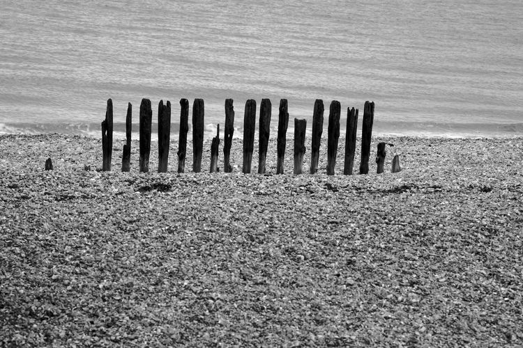 Ruins Land No People Tranquil Scene Nature Day Tranquility Wood - Material Water Post Outdoors Wooden Post Beach Landscape Sea Environment Climate Blackandwhite Black And White