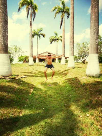 Enjoying Life Fazenda! Flying