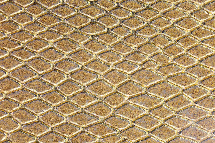 shimmering golden background of scales similar to snakeskin with rhomboid shapes #Background Scale  Shape Snake Snakeskin Fashion Abstract Animal Scale Backdrop Backdrops Background Backgrounds Outdoors Scales Scaly Shimmering Snakeskin Snakeskins Texture