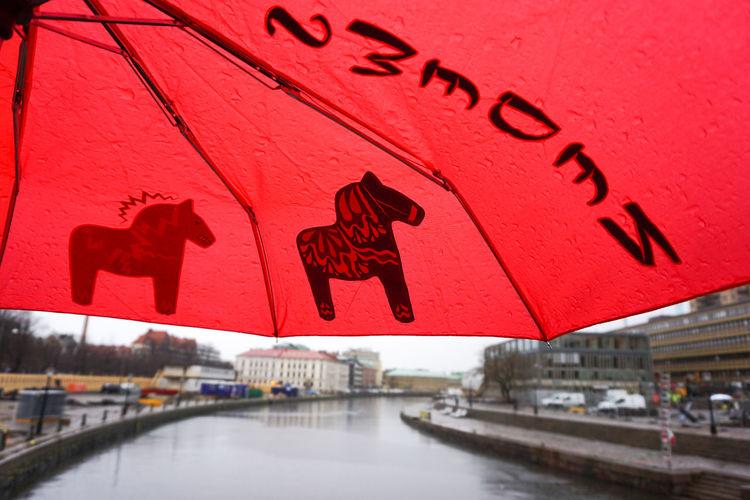 rainy day in Sweden , Gothenburg City City Life City Street Bridge - Man Made Structure Bridge Bridges Umbrella Umbrellas Rain RainDrop Rainy Days Rainy Day Travel Destinations Travel Tourist Destination Red City Architecture Building Exterior Built Structure Close-up