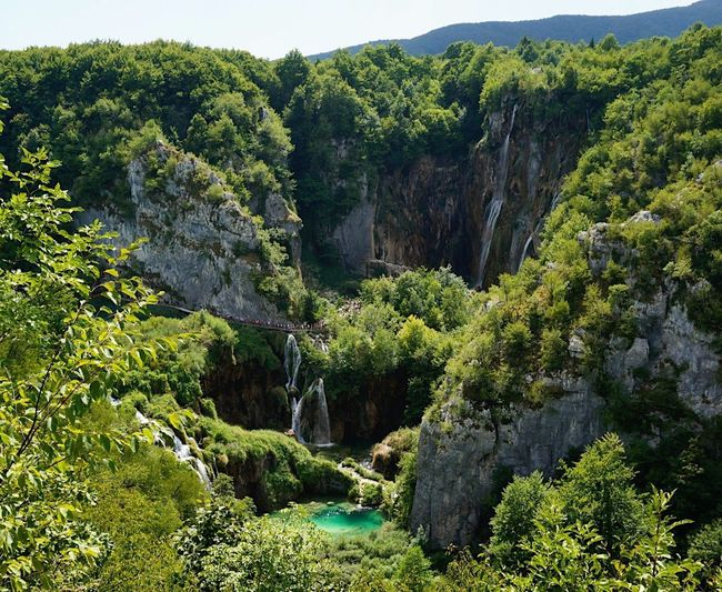 Stunning Nature Plitvice Lakes National Park Plitvice National Park Tree Croatia Waterfall Forest Landscape Landscape_Collection Nature Nature_collection Nature Photography Beauty In Nature Ladyphotographerofthemonth Shootermag Tranquility Green Color Scenics Travel Destinations Summer Water Water_collection Waterfalls Lake View Landscape_photography Breathing Space Investing In Quality Of Life The Week On EyeEm Been There. Connected By Travel The Great Outdoors - 2018 EyeEm Awards