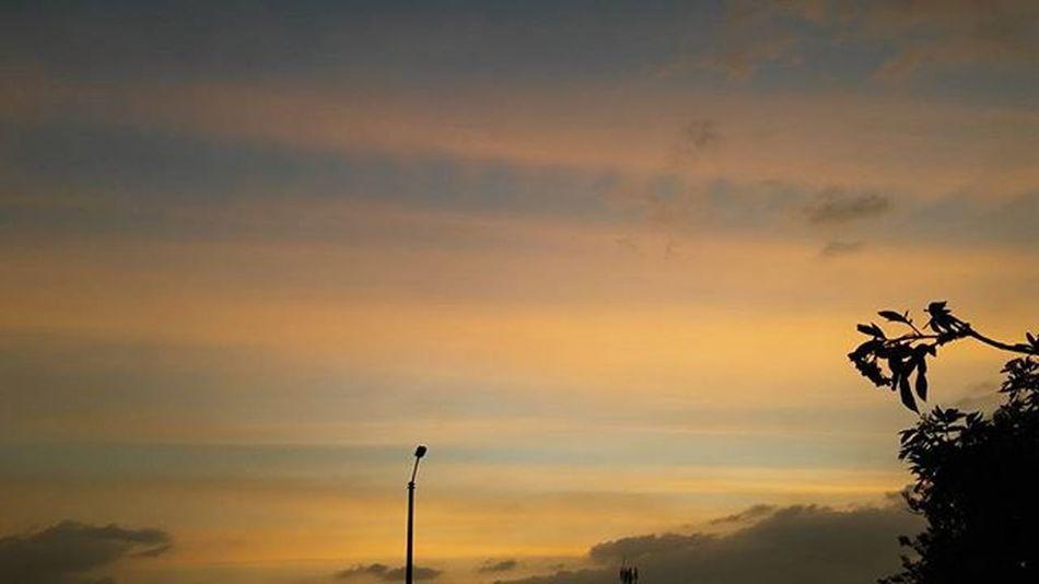 Yellowsunset