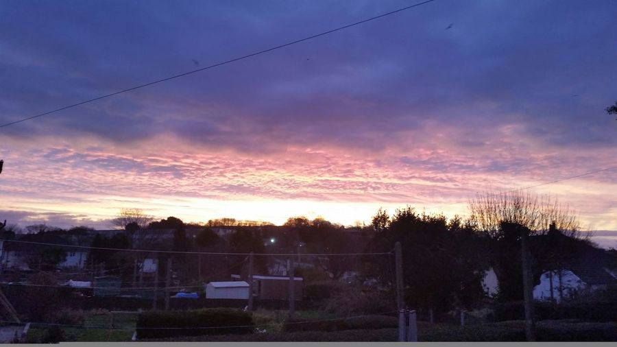 What a sunrise we had the other morning