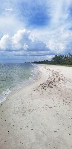 Flamingo Bird Sea Beach Water Sand Sky Animal Themes Landscape Horizon Over Water