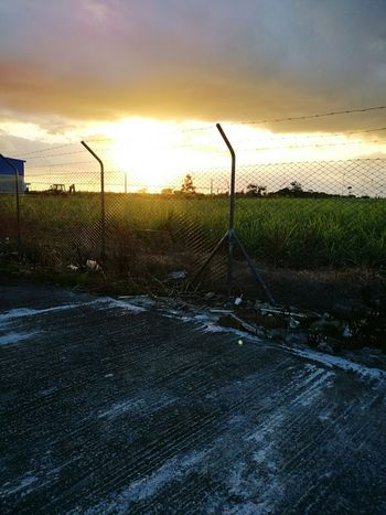 Sunset Fence Boundary No People Chainlink Fence Sky Outdoors Nature Dramatic Sky Beauty In Nature Tree Day