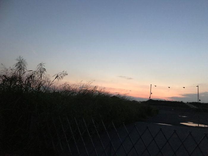 時間は戻せない… Sunset Sky No People Beauty In Nature Nature Outdoors Scenics Tranquil Scene Clear Sky Tree Day Walking EyeEm Gallery Hope Love Japan Autumn Nature 願い 希望 真実 現実 現在 過去 未来