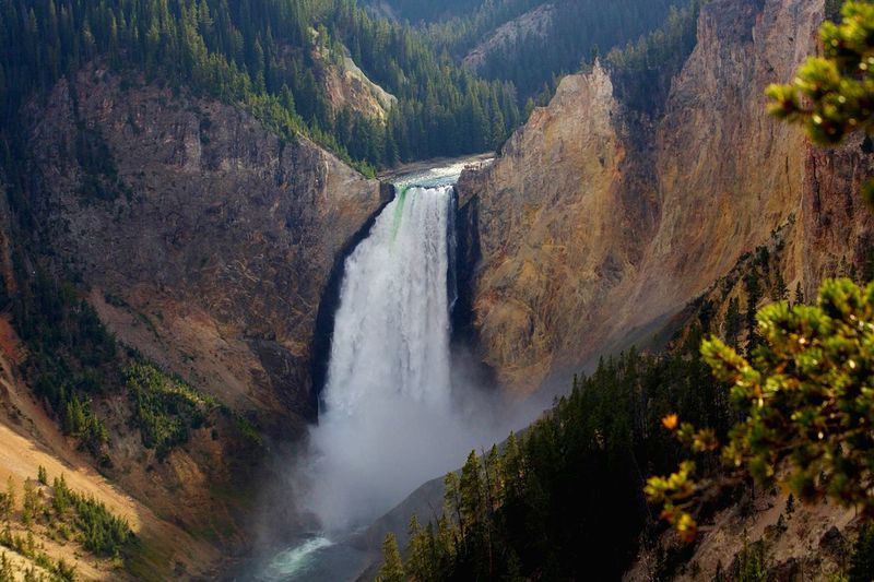 Lower Falls, Grand Canyon of the Yellowstone Usa Travel Travel Destinations Grand Canyon Of The Yellowstone Lower Falls Of The Yellowstone Yellowstone National Park Water Beauty In Nature Scenics - Nature Motion Tree Waterfall Plant Forest Day Nature Flowing Water Environment The Great Outdoors - 2018 EyeEm Awards