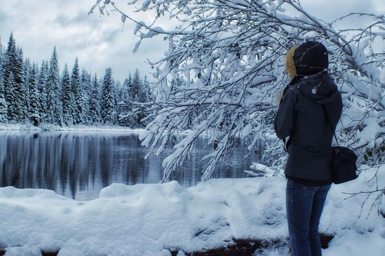 Winter Cold Temperature Snow Weather Nature Rear View Tree Beauty In Nature Full Length Real People One Person Standing Outdoors Frozen Warm Clothing Scenics Day Bare Tree Lifestyles Landscape
