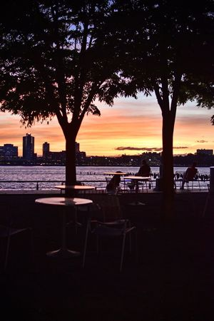 Sunset_collection Sunset Hudson River Hudson River Greenway Water Sky Sunset Tree Silhouette Nature Plant City Orange Color No People Built Structure Scenics - Nature Sea Architecture Beauty In Nature Outdoors Tranquility Beach