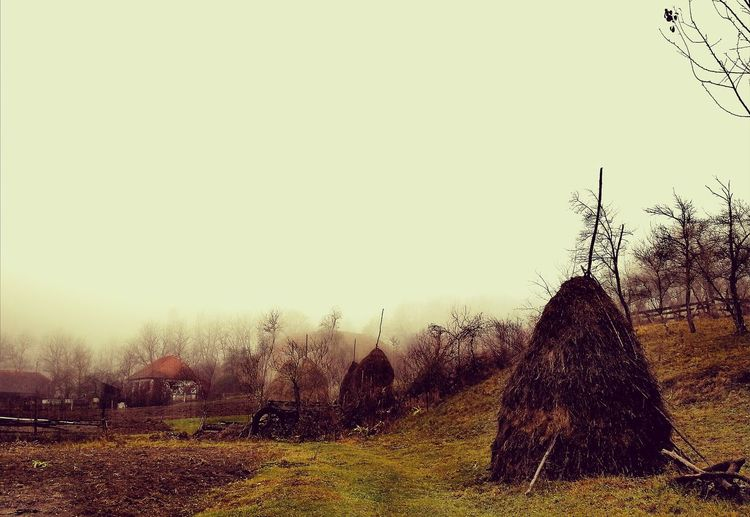 Ștei Village, Hațeg County, Hunedoara Countryside Country Life Village Village View Village Photography EyeEm Best Shots Beautifulvillage HuaweiP10 Autumn Autumn Collection Fog Foggy Foggy Day Foggy Weather Foggy Weather Landscape Outdoors No People Sky Silhouette Nature Day EyeEmNewHere Shades Of Winter An Eye For Travel