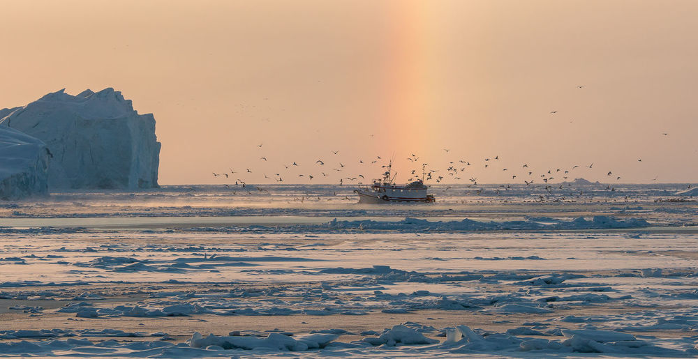 Sky Sea Scenics - Nature Beauty In Nature Sunset Water Nautical Vessel Mode Of Transportation Land Nature Orange Color Transportation Tranquil Scene No People Tranquility Ship Waterfront Winter Iceberg Iceberg - Ice Formation Rainbow Birds Seagull Vessel Fishing Boat One Boat Animals Greenland Ocean