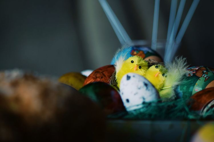 Close-Up Of Decorations During Easter At Home