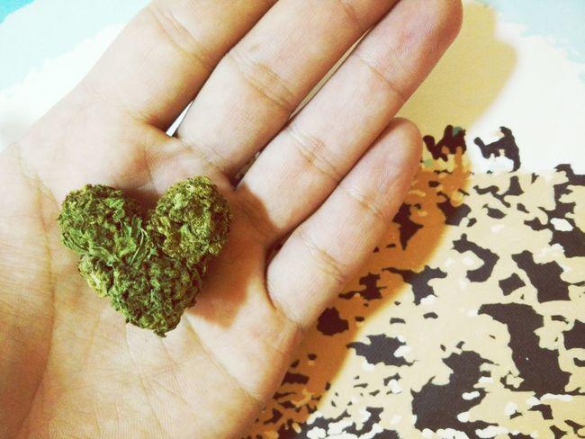 Mother nature cares about us. Weed Arthritis Weed Life Cannabis Marijuana Medical Marijuana Hope Redemption