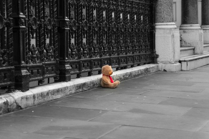 Bear London Lifestyle Lonely Street Lonley Teddy Bear Teddybear Toy Toy Photography Toyphotography