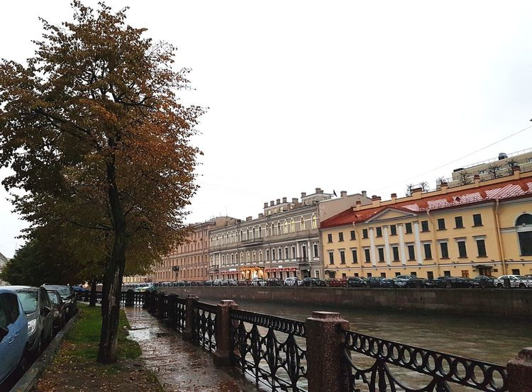 Moyka River, St Petersburg Moyka River River Canal Stpetersburg Saintpetersburg СанктПетербург Russia Russian Architettura Architektur Buildings Arquitectura Arquitetura Rainy Old Buildings Trees Building City Tree Cityscape Architecture Old Town Residential District Residential Building