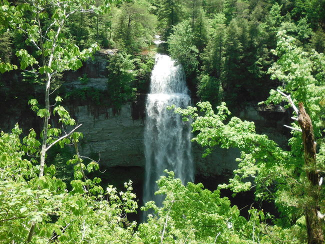 Beauty In Nature Day Green Color Nature No People Outdoors Scenics Tree Water Waterfall