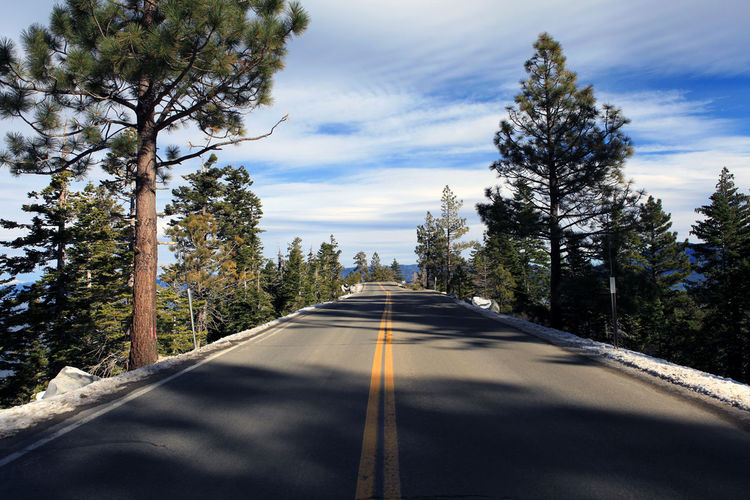 Lake Tahoe, Emerald Bay Lonely Road Nature Outdoors Road Tranquility Travel Traveling Tree California Dreamin