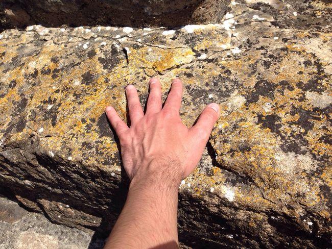 #DoctorWho sat on this stone (Tom Baker)