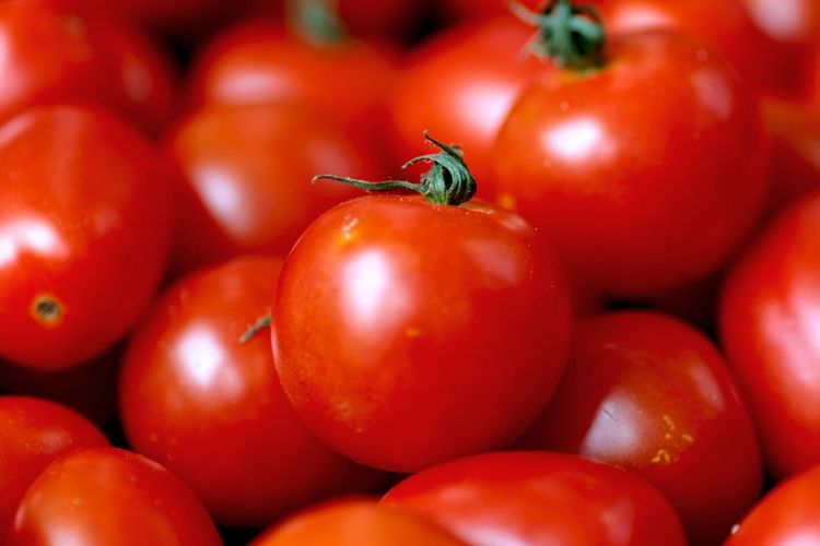 Backgrounds Food And Drink Outdoors Red Tomato Vegetable