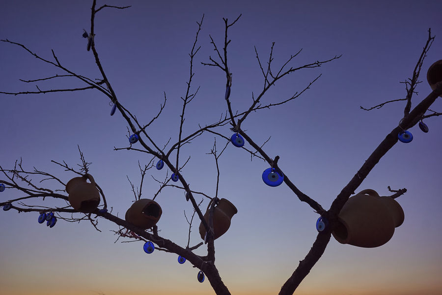 Bare Tree Branch Day Decorated Tree Evil Eye Jugs Nature No People Outdoors Sky Sunset Tree Tree And Evil Eyes Tree And Sky Adapted To The City