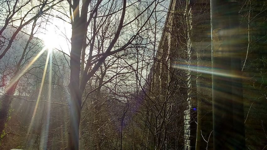 Saddleworth Viaduct Uppermill United Kingdom