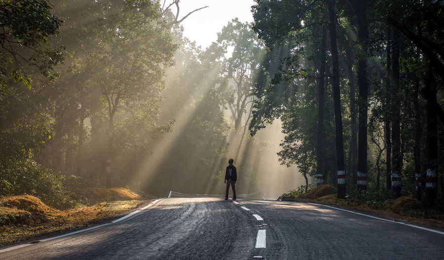 Rear view of man on road against trees