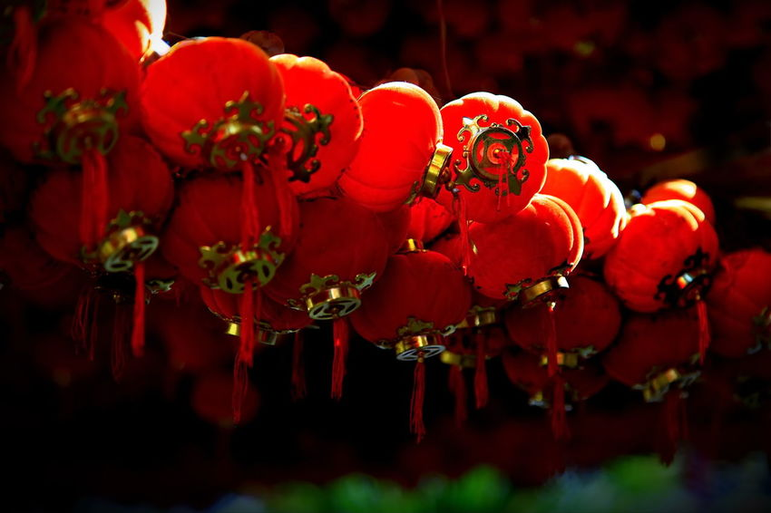 Chinese Lantern. Beautiful Culture And Tradition Flower Lantern Red Worship Place