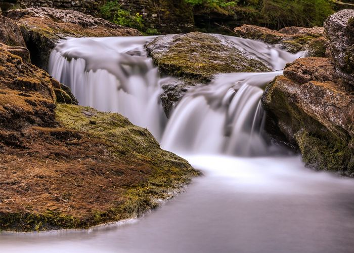 Close-up of waterfall in forest